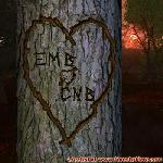 Proof of Love between EMB and CNB