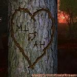 Proof of Love between ML and AH