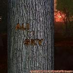 Proof of Love between ALI and SKY
