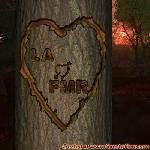 Proof of Love between LA and FMR