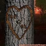 Proof of Love between RE and AL