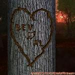 Proof of Love between BEV and AL