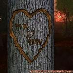 Proof of Love between MK and UW