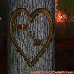 Proof of Love between MS and JK