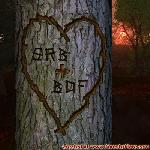 Proof of Love between SRB and BDF