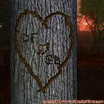 Proof of Love between DF and SB