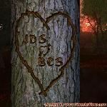 Proof of Love between JDS and BCS