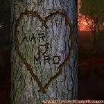 Proof of Love between AAR and MRO