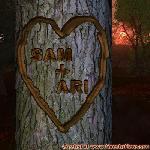 Proof of Love between SAM and ARI