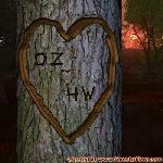Proof of Love between OZ and HW
