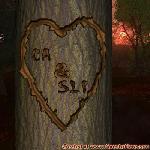 Proof of Love between CA and SLI