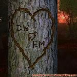 Proof of Love between CW and EM