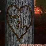 Proof of Love between DAN and SAM