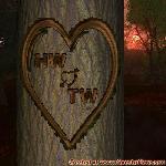 Proof of Love between HW and TW