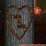 Proof of Love between TMB and GEL