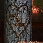 Proof of Love between JEZ and AMZ