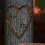 Proof of Love between AH and JD