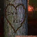 Proof of Love between DWH and KLH
