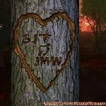 Proof of Love between SJT and JMW