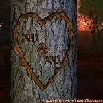 Proof of Love between KU and KU