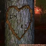 Proof of Love between CM and KJ