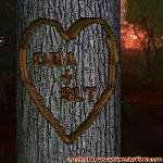 Proof of Love between DBA and SLT