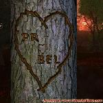 Proof of Love between PR and BEL
