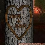Proof of Love between JWR and SBR