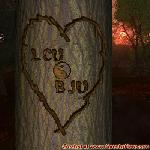 Proof of Love between LCU and BJU