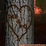Proof of Love!
