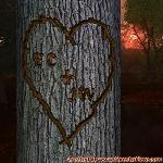 Proof of Love between EC and JW