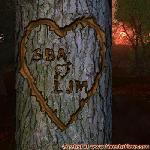 Proof of Love between SBA and LJM