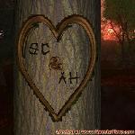 Proof of Love between SC and AH