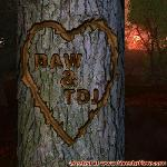 Proof of Love between BAW and TDJ