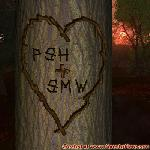 Proof of Love between PSH and SMW