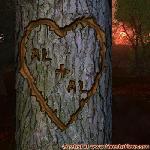 Proof of Love between AL and AL
