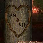 Proof of Love between SM and AH