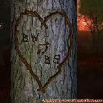 Proof of Love between BW and BS