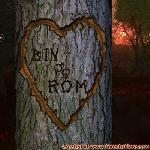 Proof of Love between BIN and ROM