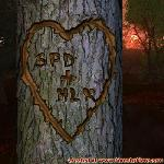 Proof of Love between SPD and HLK