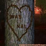 Proof of Love between WAB and NAL