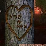 Proof of Love between NMD and HEN