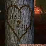 Proof of Love between HAE and RCG